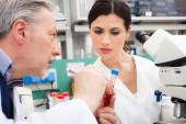 Researchers at work in a laboratory — Stock Photo