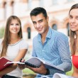 Students studying in a park — Stock Photo #68924827