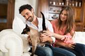 Couple playing with their cat — Stock Photo