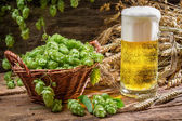 Basket full of hops and a cold beer — Stock Photo