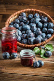 Fresh preserves from plum in the pantry — Stock Photo