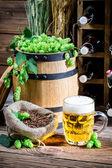 Fresh beer and hoppy flavor — Foto de Stock