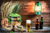 Light beer in a pint taste in the cellar — Stock Photo
