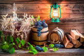 Cellar full wine and grapes — Stock Photo