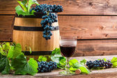 Red wine in a glass and grapes — Stock Photo