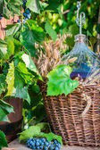 Red wine in a wicker basket — Stock Photo