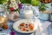 Healthy breakfast with fruit and milk — Stock Photo