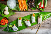 Fresh spring rolls with vegetables and rice noodles — Stock Photo
