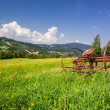 Red rake in a field in the mountains — Stock Photo #54327631
