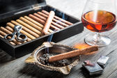 Aroma of cognac and cigar fuming — Stock Photo