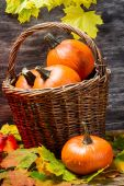 Pumpkins in wicker basket with leaves — Stock Photo