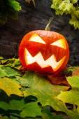 Glowing halloween pumpkin on autumn leaves — Stock Photo