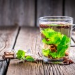Green tea with cinnamon bark — Stock Photo #54509367