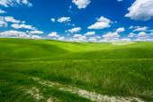 Cracked dirt road between green fields — Stock Photo