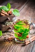Freshly brewed hot green tea — Stock Photo