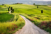 Dirt road and green field in Tuscany — Stock Photo