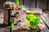 Green tea with cinnamon bark — Foto de Stock