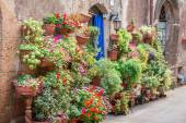 Beautiful porch decorated with flowers in italy — Stock Photo