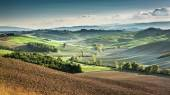 Beautiful view of the autumn landscape in Tuscany, Italy — Stock Photo