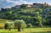 View of a small village in Tuscany — Stock Photo