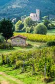 Country road leading through vineyards to the monastery — Stockfoto