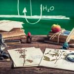 Teaching biology at vintage school — Stock Photo #58721365