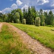 Country road between the sheaves of hay — Stock Photo #58831443