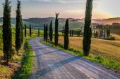 Sunset and winding road with cypresses in Tuscany — Stock Photo