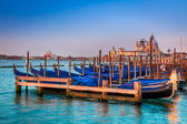 Blue gondolas at sunrise in Venice — ストック写真