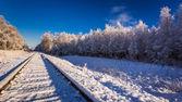 Frozen in winter railway line between forests — Stock Photo