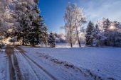 Floresta de Inverno congelado na luz solar brilhante — Fotografia Stock