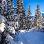 Winter snowy mountain trail — Stock Photo #62119921