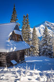 Snowy mountain hut in the mountains — Stock Photo