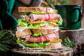 Double-decker forester sandwich — Stock Photo