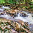 Mountain stream full of clean water — Stock Photo #63190263