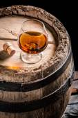 Glass of good cognac in the distillery basement — Stock Photo