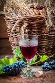 Taste of red wine straight from the demijohn — Stock Photo
