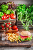 Delicious chicken burger with fries — Stockfoto