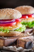 Fresh burge — Stock Photo