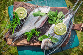 Grilling fresh fish with herbs and lemon — Stock Photo