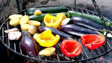 Roasted vegetables on the grill with fire — Stock Video