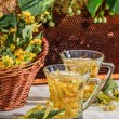 Tea made of lime and honey served in the garden — Stock Photo #74151417
