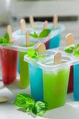 Ev yapımı dondurma meyveli yoğurt ile — Stok fotoğraf