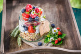 Healthy breakfast with yogurt and berry fruits in sunny day — Stock Photo