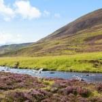 Scottish highland rural landscape — Stock Photo #53780073