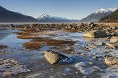 Chilkat Beach Ice — Stock Photo