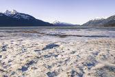 Frosty Alaskan Beach — Stockfoto
