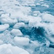 Floating Ice Chunks — Stock Photo #64872523