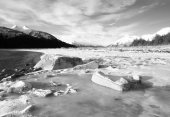 Chilkat Inlet Ice — Stock Photo