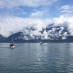 Salmon Fishing Boats in Southeast Alaska — Foto Stock #80159818